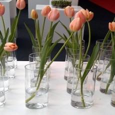 Tulipaner-i-cylindervaser-fra-crocca.dk_.jpg