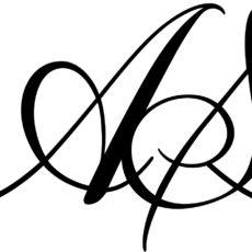 anne spang logo